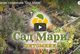Видеофильм о нашем питомнике